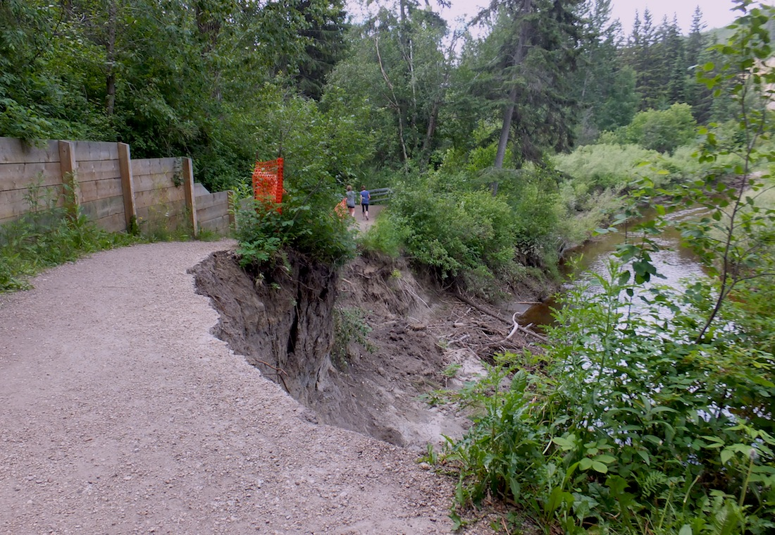 The carnivorous Whitemud Creek...