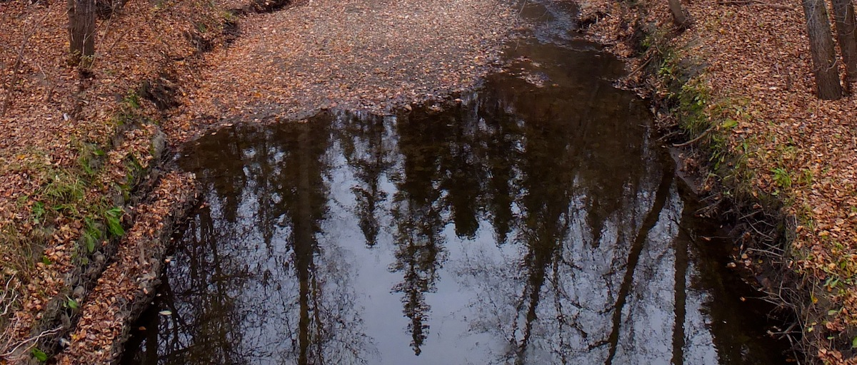 Mill Creek Reflection