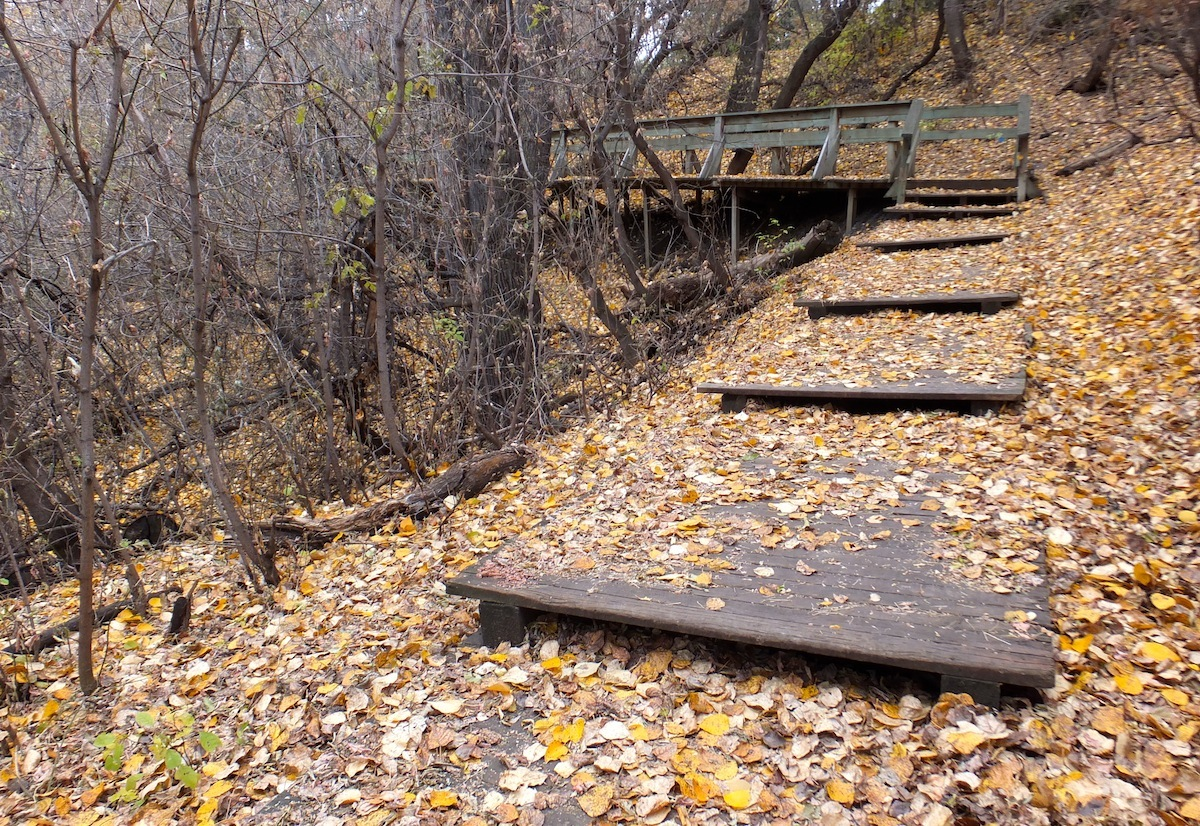 Stairs leading out of Mill Creek