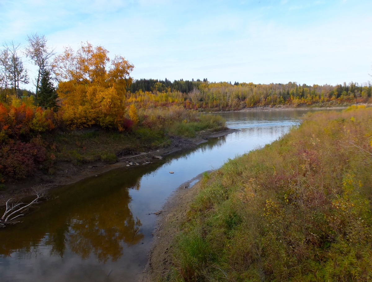 Whitemud Creek meet the North Saskatchewan River