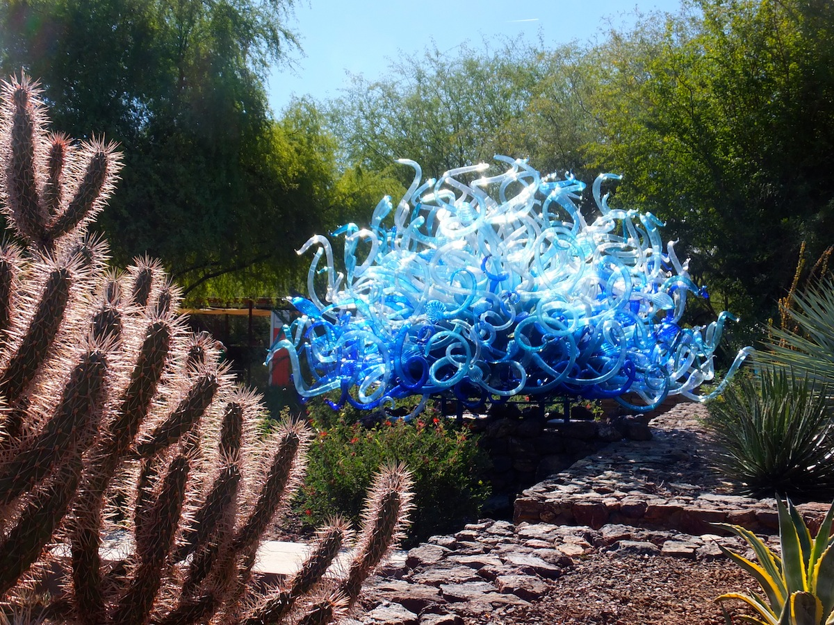 Either an alien...or a Chihuly glass sculpture at the Desert Botanical Garden
