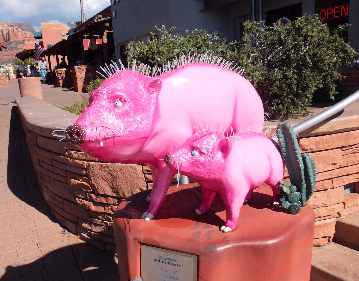 Decorated Javelinas throughout Sedona. Bolted down, unfortunately...