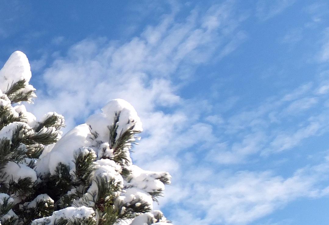 Snow one