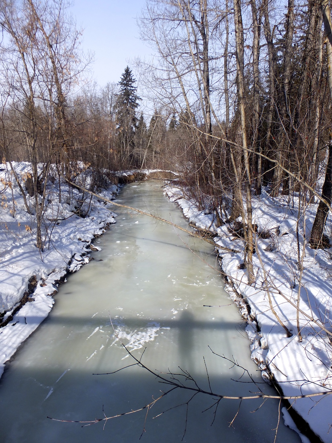 Mill Creek frozen green