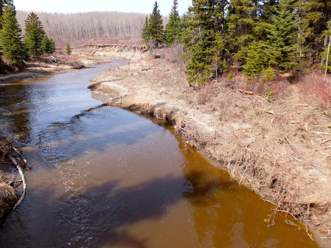 Whitemud Creek -after the flood