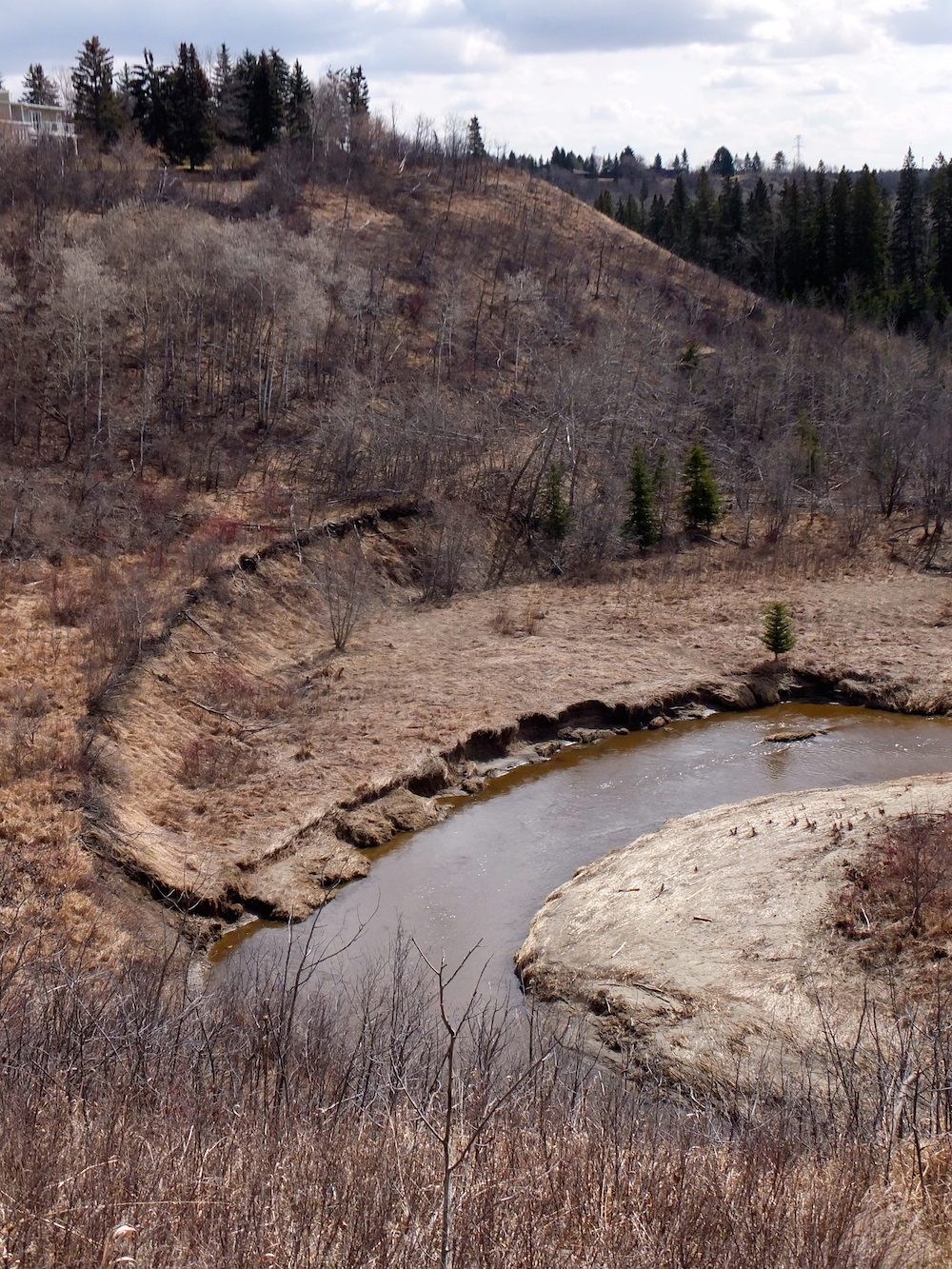 Whitemud Creek, slumbering still