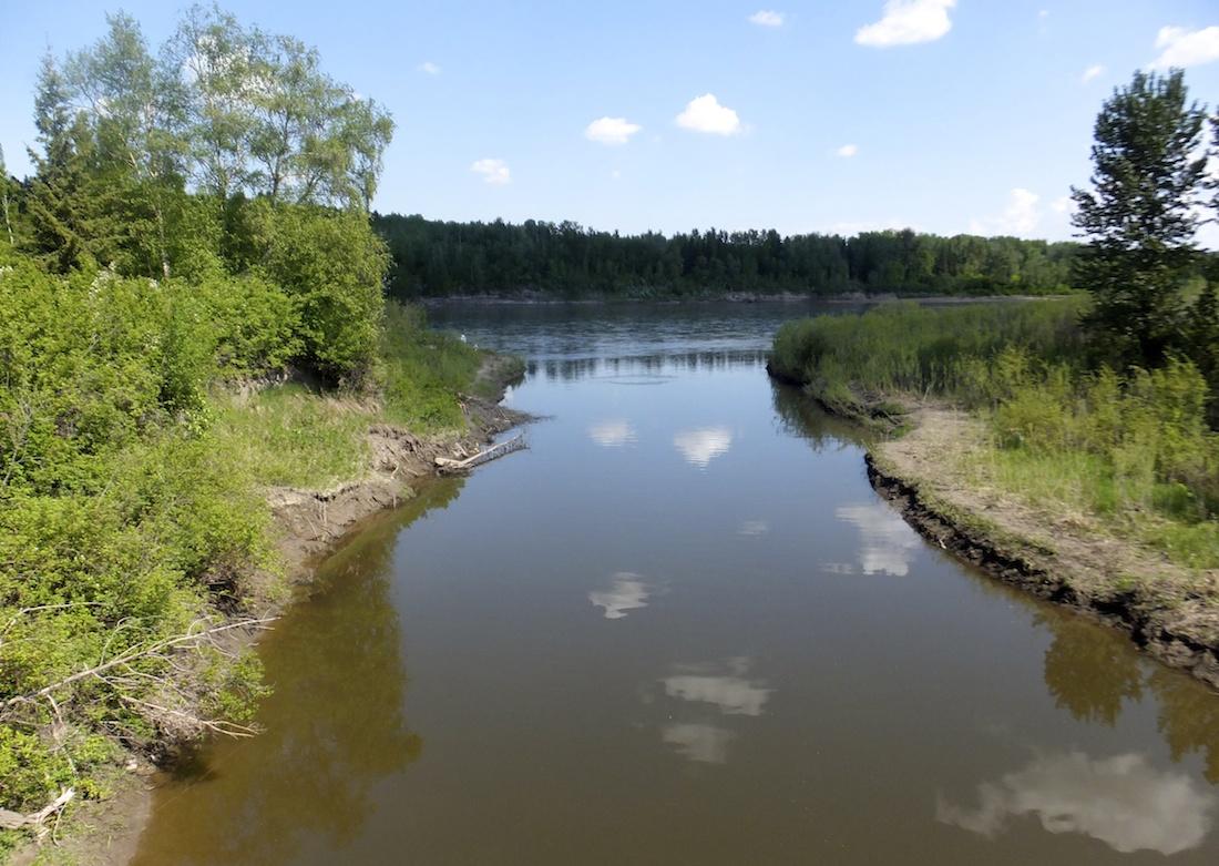 Whitemud Creek meets the North Saskatchewan River