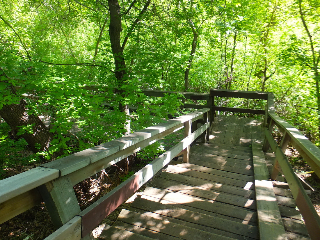 Mill Creek stairs