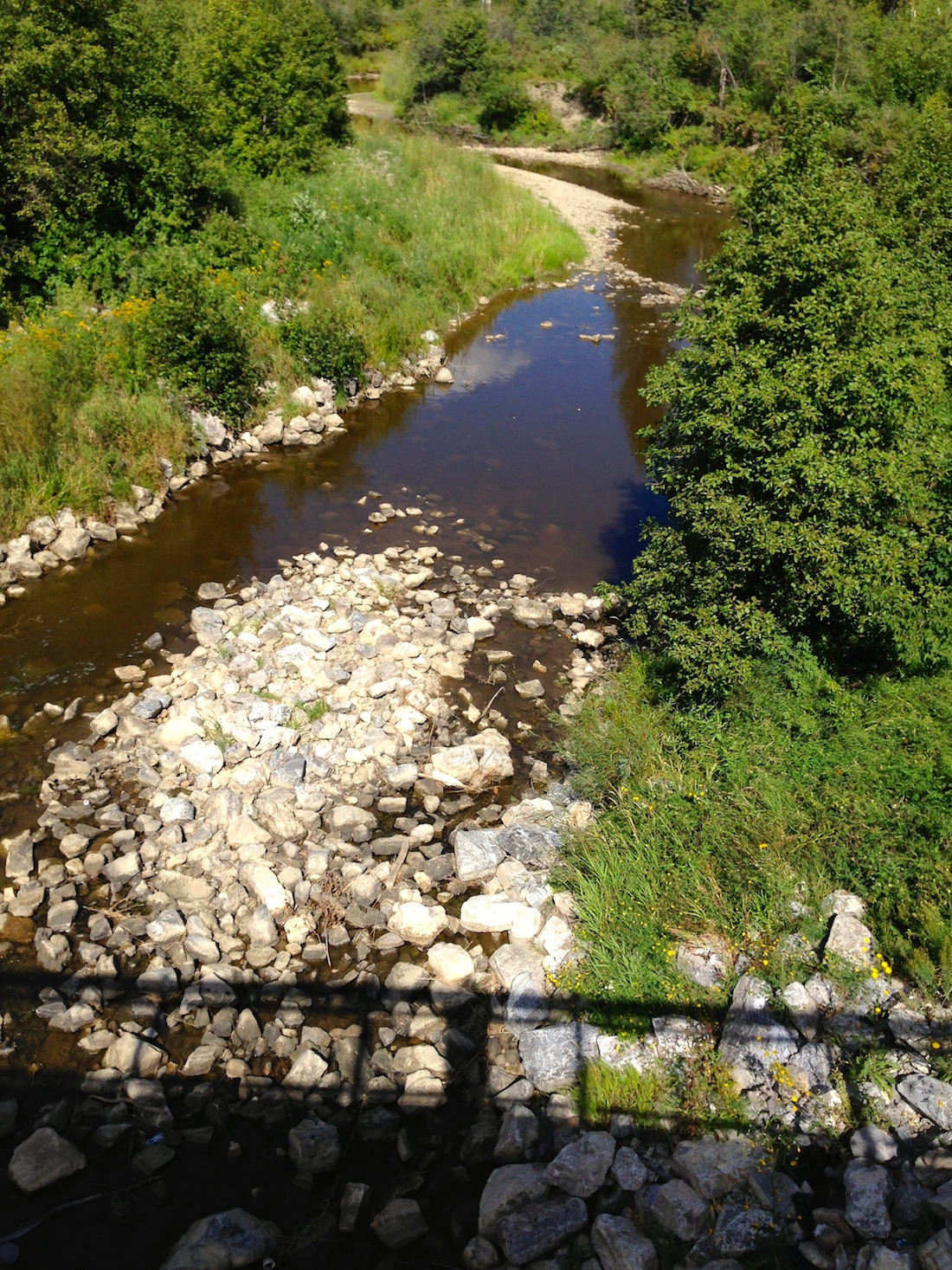 Whitemud Creek on Monday - low, and slow