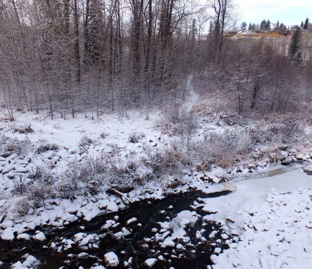 Whitemud Creek half frozen