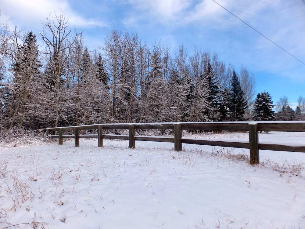 Whitemud powerline