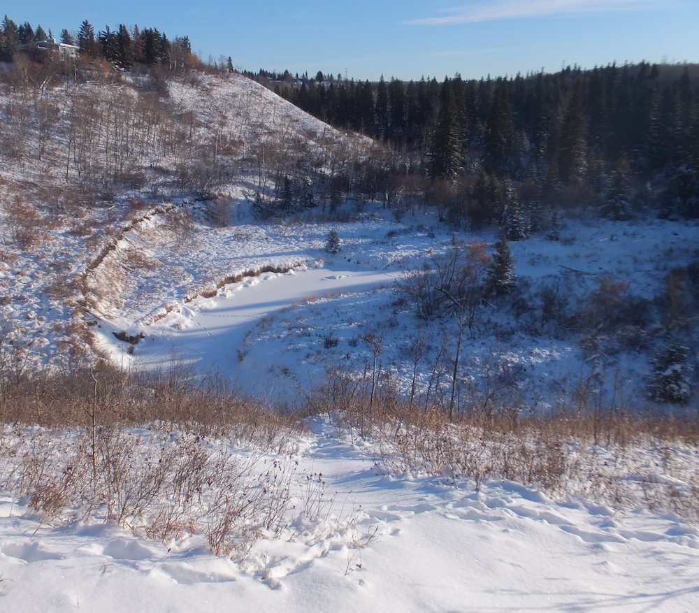 The mighty Whitemud Creek, taken from the lookout (first photo)