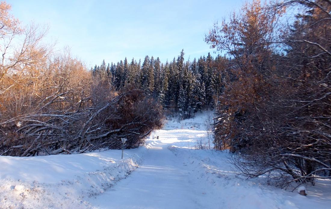 Mill Creek Ravine 1
