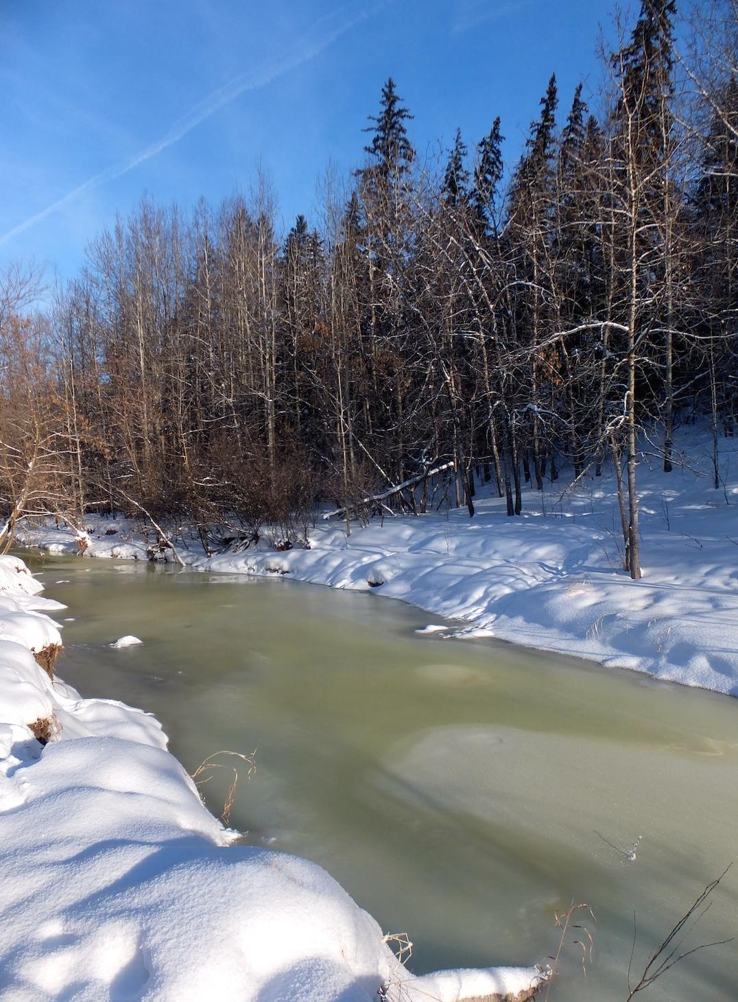 Mill Creek Ravine 2