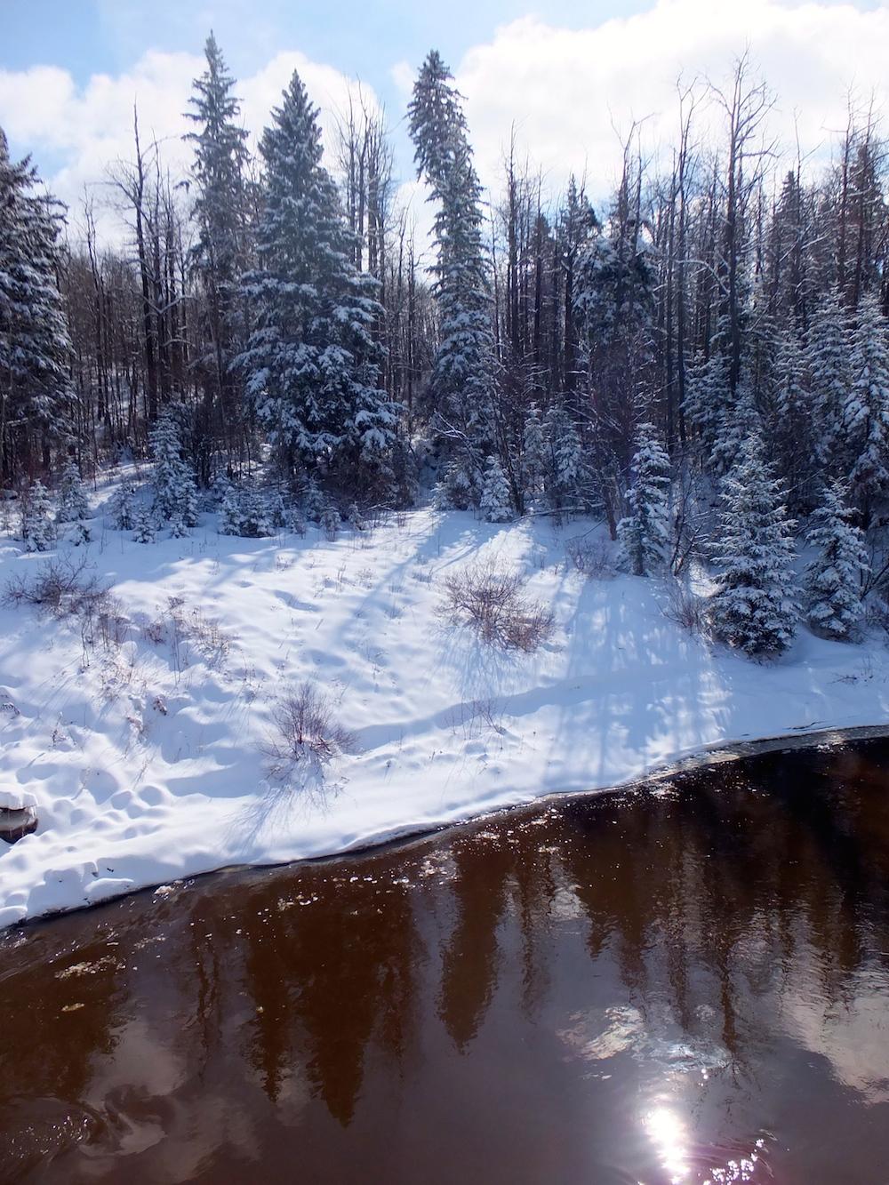 7 Whitemud Ravine Creek South