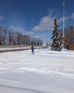 Crosscountry skier