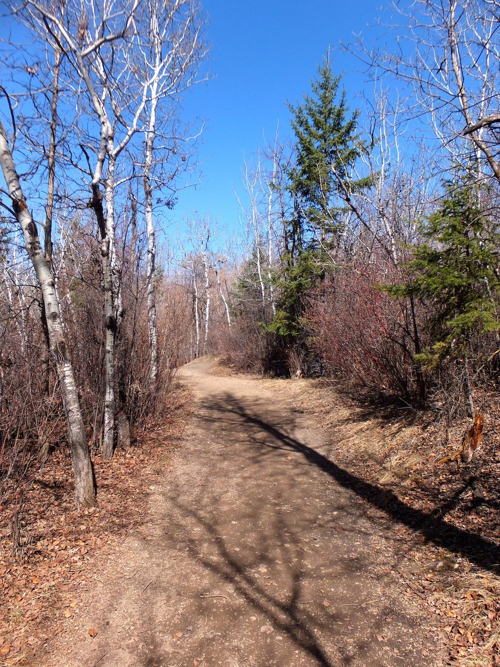 Mill Creek Ravine upper trail heading north