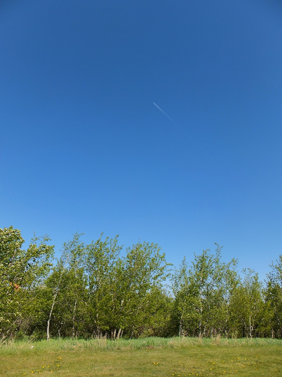 Into the clear blue sky