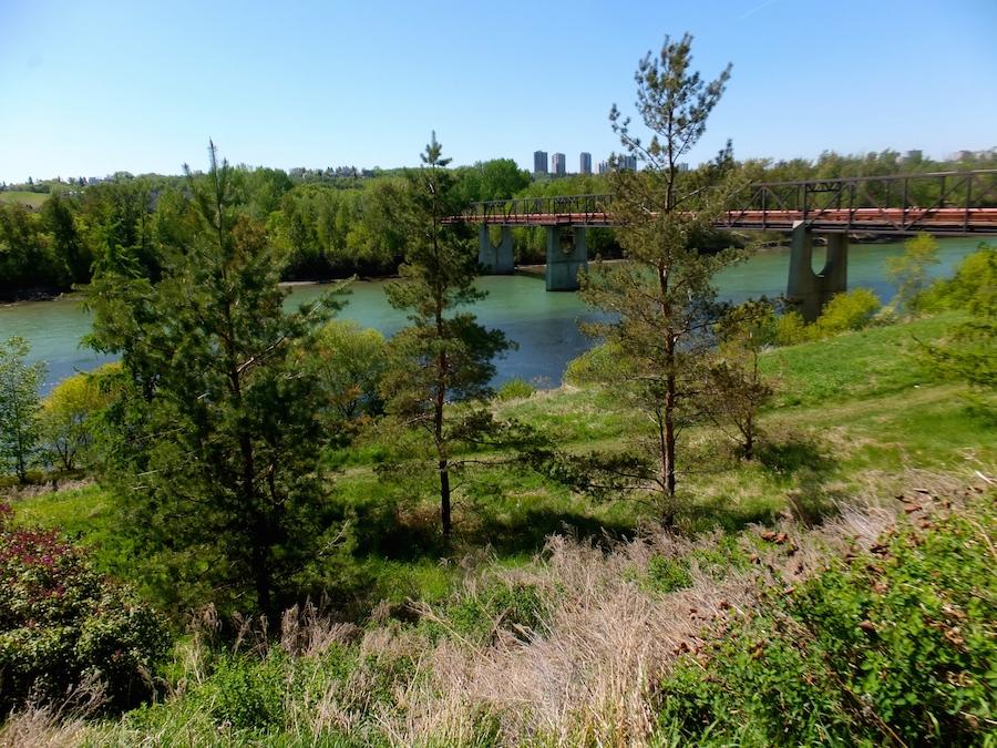 The footbridge taken from the edge of Riverdale