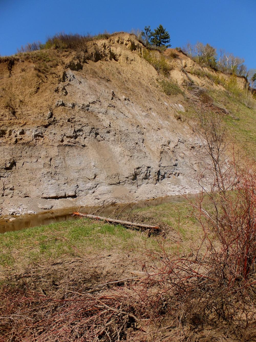 Whitemud Hill 2
