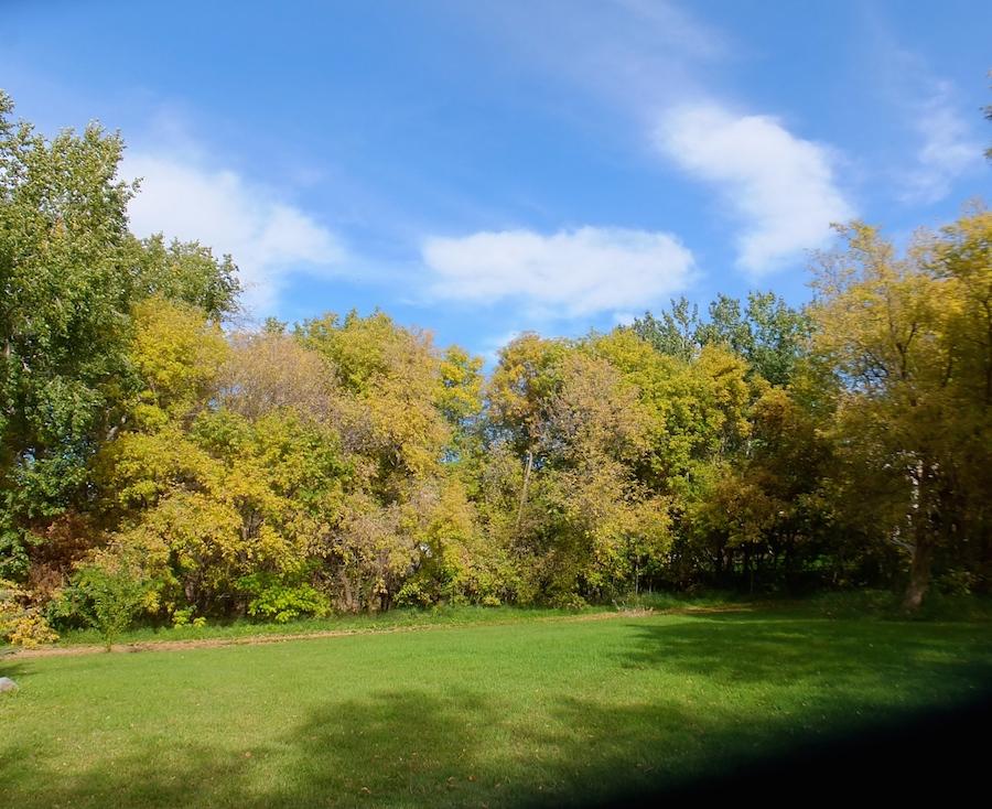 Near the Fort Edmonton footbridge