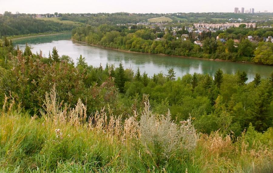 The river valley near McNally High School