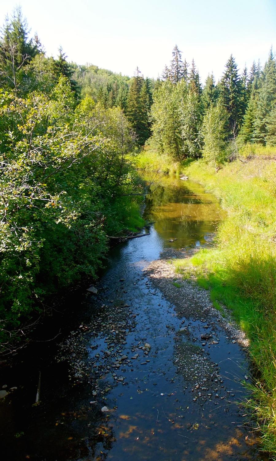 Whitemud Creek North