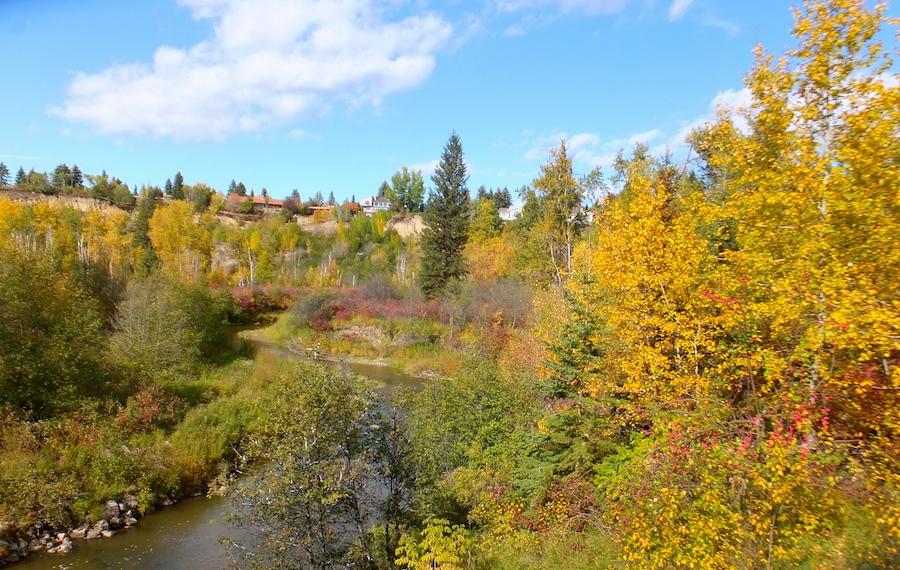 Whitemud Creek1