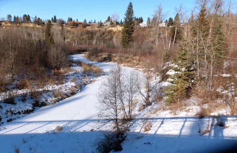 Bridge O'er Whitemud Creek