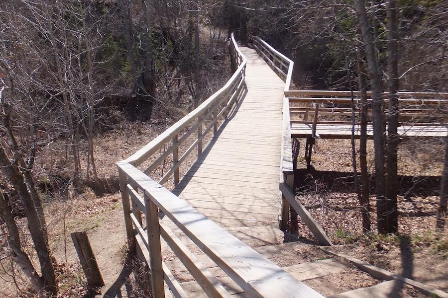 Buena Vista Park footbridge