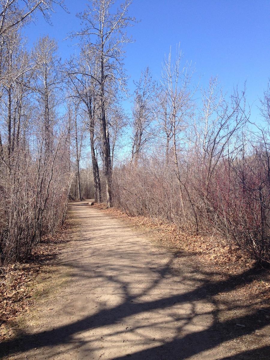 Hawrelak trail