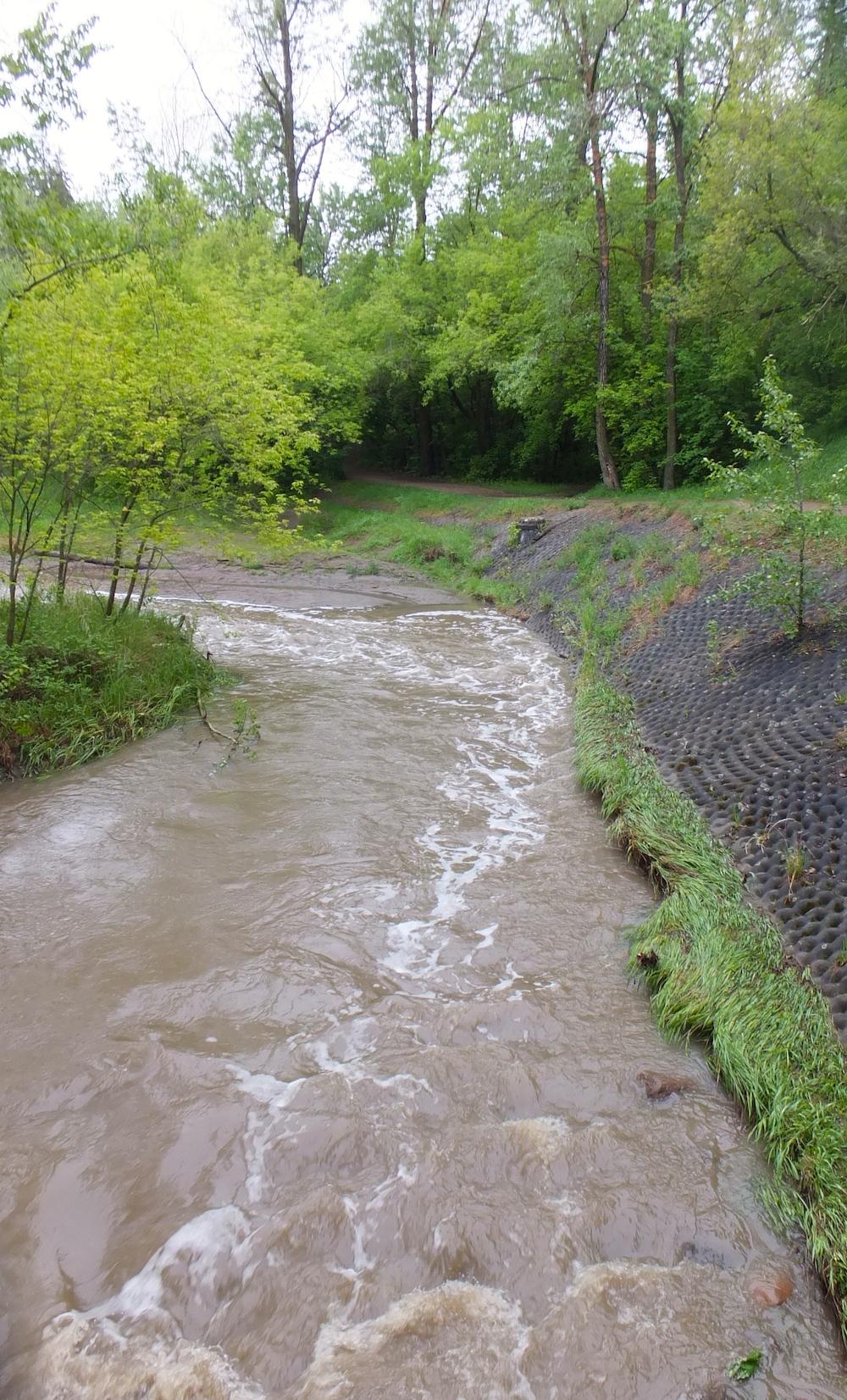 Mill Creek overflowing