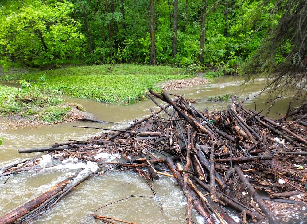 Mill Creek wood