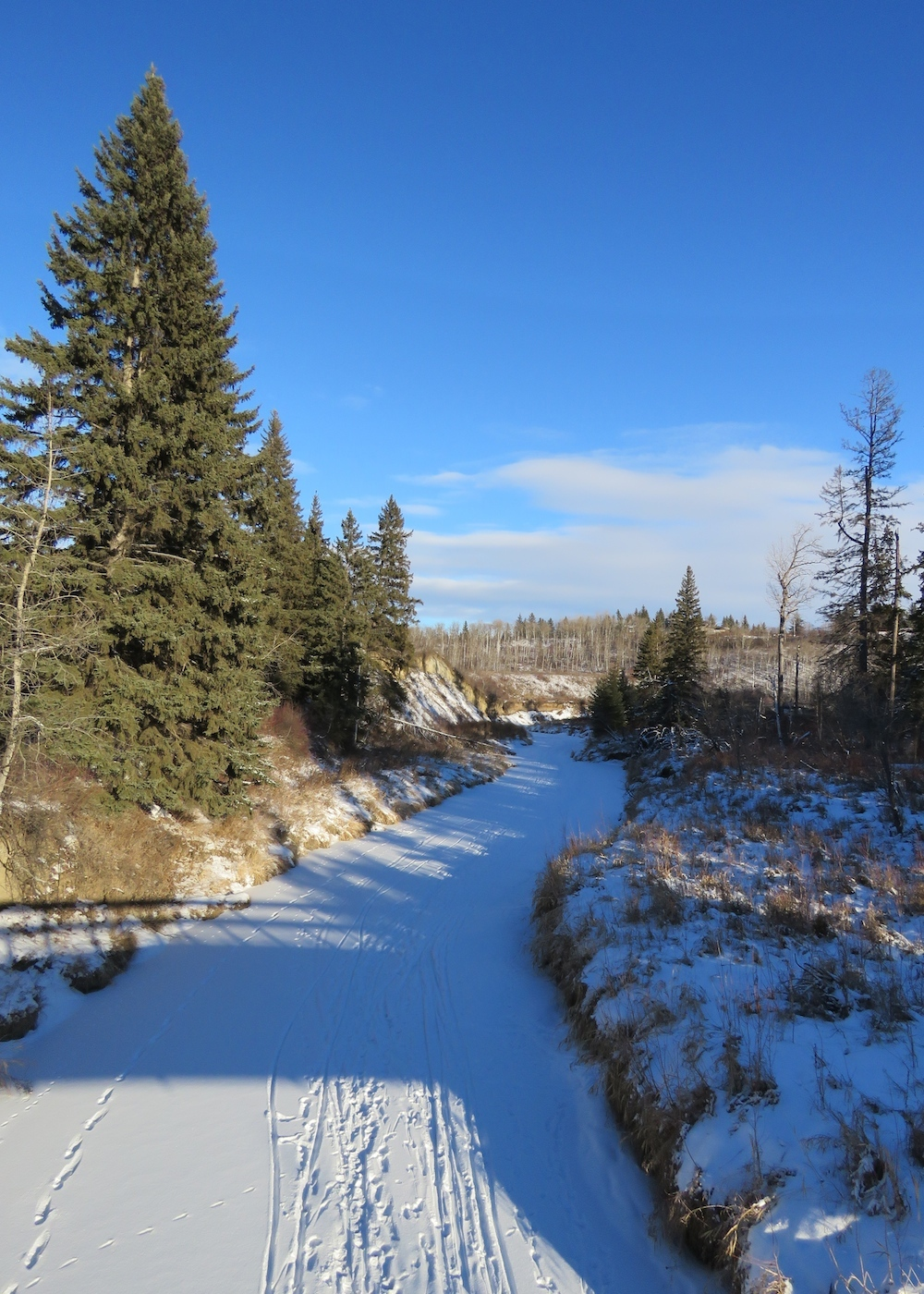 whitemud-ravine