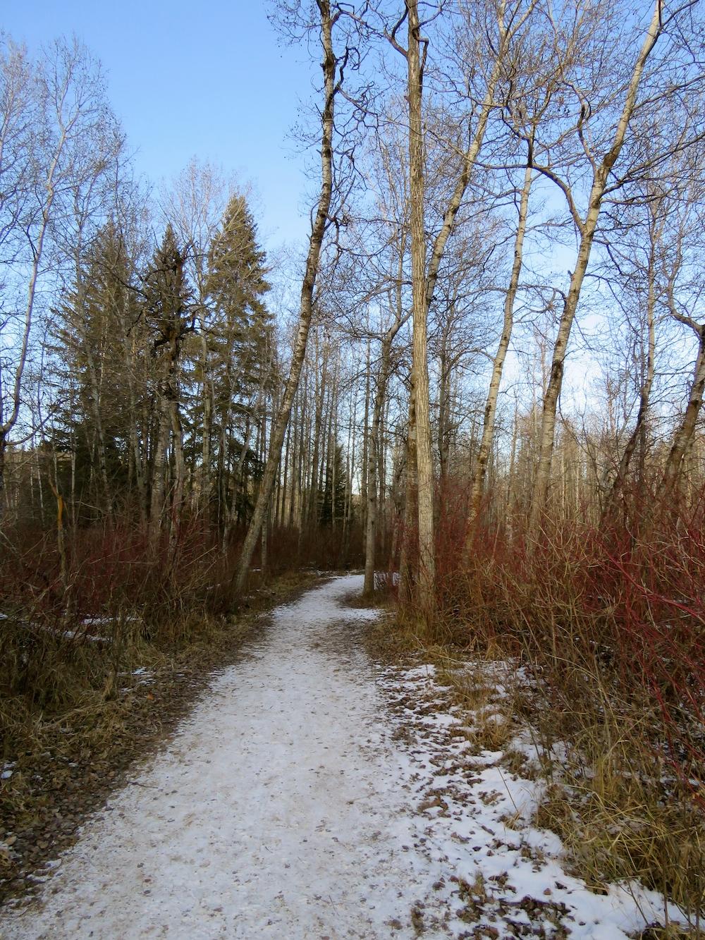 whitemud-trail