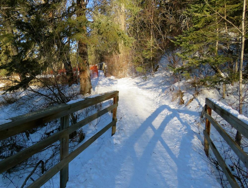 Whitemud boardwalk